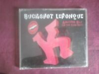 BUCKSHOT LEFONQUE- ANOTHER DAY (1 TRACKS). CD SINGLE.