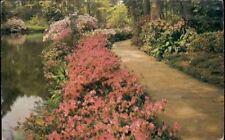 (dx3) Theodore AL: Bellingrath Gardens