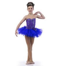 Adult Large Purplescent Ballet Tutu Dance Costume