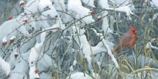 Robert Bateman Fresh Snow - Cardinal