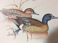 Vtg. Gregory F. Messier Lithograph Print Mallard Ducks Signed 1977 Donald Art Co