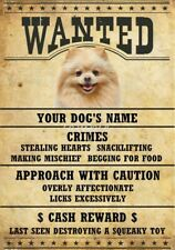 Pomeranian Wanted Personalized Magnet With Your Dog's Name