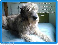 Sad Irish Wolfhound Dog Refrigerator / Tool Box Magnet Gift Card Insert