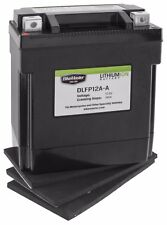 BikeMaster Lithium-Ion Battery DLFP14-A     CAN-AM   Rally 200   02-06