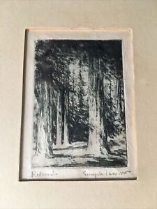 "SIGNED ca.1930's Evangeline Benbow Etching of a REDWOOD GROVE ""Redwoods"" Framed"