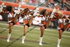 Sexy 8x10 Unsigned NFL Cheerleader Photo Cincinnati Ben–Gals BENGALs FRC211