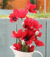 62 cm Artificial Silk Flame Red Poppy Flower Stem - Decorative Red Poppies