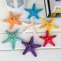 5 pcs Mixed Colored Natural Starfish Nautical Decor Beach Wedding DIY Crafts