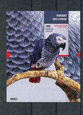 Togo 2014 MNH African Grey Parrot 1v S/S II Birds Perroquet Gris d'Afrique