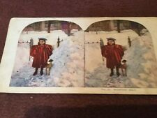 vintage stereoscopic slide . No 32 Midwinter Days
