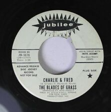Rock Promo 45 Charlie & Fred - The Blades Of Grass / The Blades Of Grass On Jubi