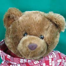 AEROPOSTALE STORE RED HOODIE SWEATSHIRT BROWN TEDDY BEAR PLUSH STUFFED ANIMAL TO