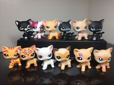 3X Littlest Pet Shop LPS Cats #339 #2249 #3573 #994 #2291 3pc Random USA SELLER