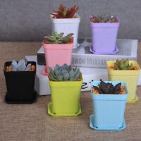 7pcs Mini Plastic Plant Flower Pot Planter Home Office Nursery Garden Pot Set