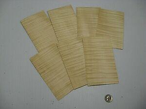 1 Lot Of 7pcs Curly Fiddleback European Maple Veneer Shorts, Lot #1040
