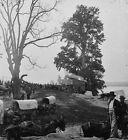 Union Sanitary Commission Wagons Belle Plain Va 1864 New 8x10 US Civil War Photo