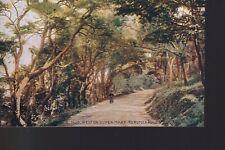 Weston-super-Mare Kewstock Road  Kewstoke Old Unposted Postcard