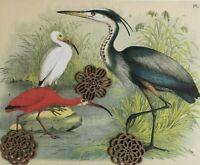 Vtg 1977 Art Print WATER Bird SEA MARSH LANDSCAPE Antique Repro Theodore Jasper