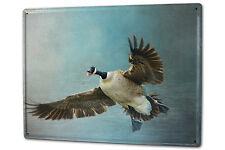 Tin Sign XXL Bird Canada goose