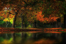Framed Print - Small Pond Under Autumn Trees (Picture Poster Forest Woods Art)