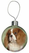 Blenheim King Charles Spaniel Christmas Tree Bauble Decoration Gift Ad-skc7cb