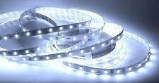 STRISCIA STRIP LED SMD 5050 BIANCO 5 MT 24V. IP 65
