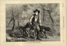 1877 Horse And Hounds Hunting The Roebuck