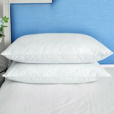 2 Pack Quilted Goose Down Feather Bed Pillows Queen King Size Hypoallergenic