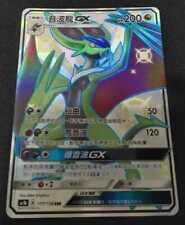 PTCG Pokemon Chinese Star Collection Hidden Fates SM GX SSR Noivern Full Art NEW