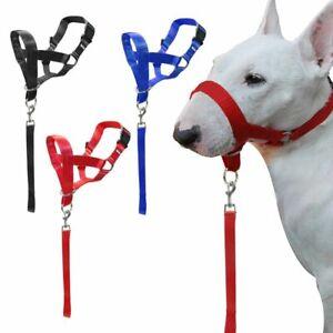 New Nylon Dog Pet Head Collar Halter Leash No Pull Training Straps M L XL 2XL