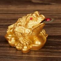 Feng Shui Lucky Money Toad Ingot Gold Three Legs Frog Enhance Fortune Decor V9R5