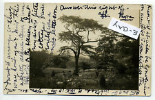 Peekskill NY (Westchester Co) RPPC real photo meadow 1910, chatty card