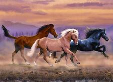 Malen nach Zahlen PJL-32 Pferde