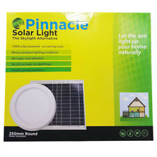 Pinnacle 250mm Round Solar Light