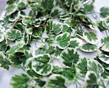 green/white chainlink Ivy garland Artificial silk 8ft! 244cm loads of leaves