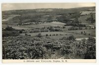 RPPC Widmer's Wine Vineyards Winery NAPLES NY Ontario County Real Photo Postcard