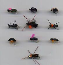 Trout Flies: Foam Flies: Beetles x 10 sizes 10 & 12 assorted  (code 584)