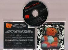 TESTING TO DESTRUCTION by DAVID CROSS. SUPERB PROG ROCK/JAZZ/FUSION ALBUM ON CD!