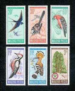 HONGRIE - FAUNE Oiseaux - 1966