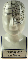 Medium 24cm High Ant. Phrenology Head Decorative Ornament