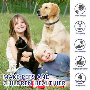 Anti Insect Flea and Tick Collar 8 Month Protection For Pet Dog Cat AdjustableSJ