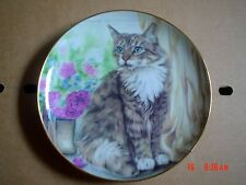 The Trinity Collection THE NORWEGIAN FOREST CAT - CATS OF THE WORLD
