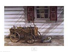 DAN CAMPANELLI - Pansies 4 Sale - FINE ART PRINT Country Floral Poster 32x24