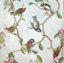 3x Single Paper Napkins Decoupage Craft Tissue Birds on Tree Branches Twigs M231