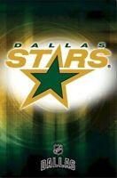 DALLAS STARS ~ SPOTLIGHT LOGO 22x34 POSTER NHL National Hockey League