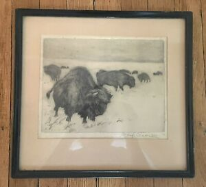 Framed Expertly-Textured Signed Etching of Bison by Josef Cisar 1927