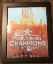 Houston Astros World Series Champions Framed 8X10 Picture.