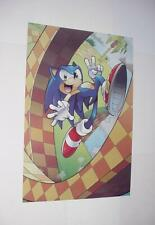 Sonic the Hedgehog Poster #10 Sonic Peace Sign in Shuttle Loop Movie 2019