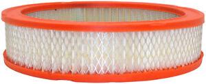 Air Filter Defense CA184