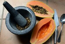 Papaya Seeds Powder Herbal for Health 100% Organic NON GMO 10 g (0.36 oz) Free